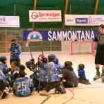 hockey-hammond3web.jpg