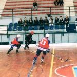 hockey06-4.jpg