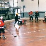 hockey06-8.jpg